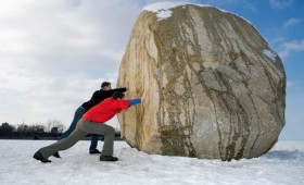 Business and Development Teams