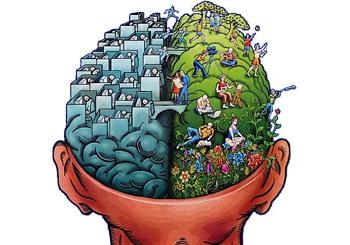 rational-emotional-brain