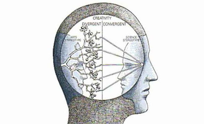 divergent and convergent thinking Divergent thinking is a thought process or method used to generate creative ideas by exploring many possible solutions it is often used in conjunction with its.