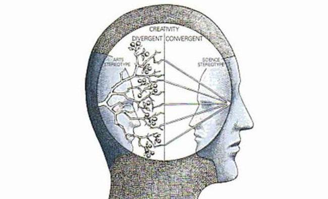 divergent-convergent