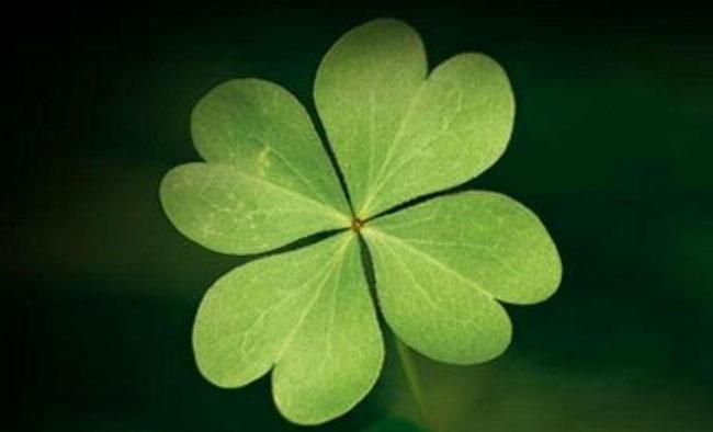 return-of-luck