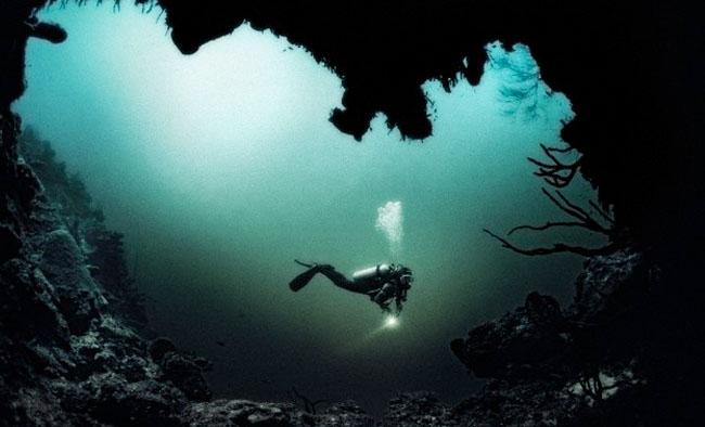 Amazon 12th Principle: Dive Deep