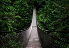 bridging-the-leadership-communication-gap
