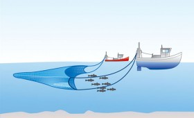 The Metaphor of Trawling for Requirements